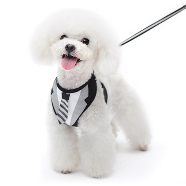 EasyGo Necktie Dog Harness by Dogo