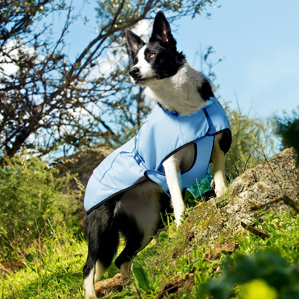 Hurtta Cooling Dog Coat - Blue