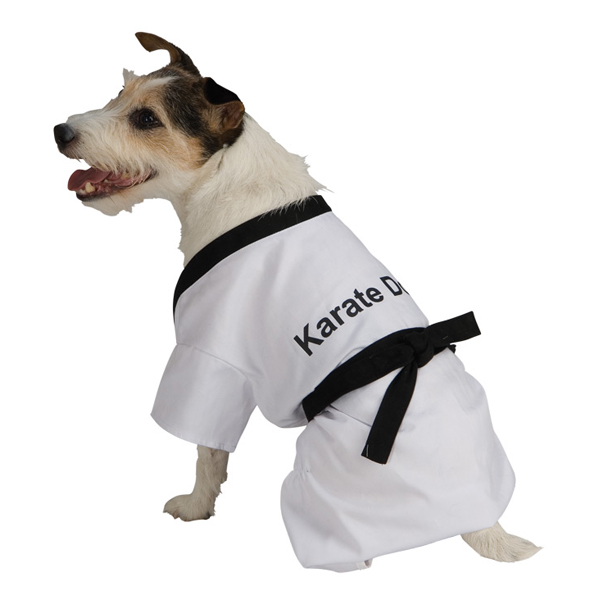 Karate Dog Halloween Costume