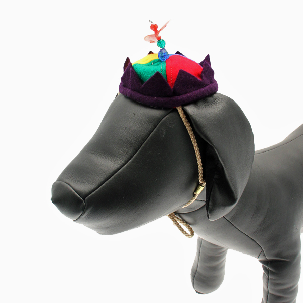 Propeller Beanie Dog Hat
