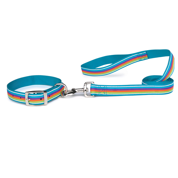 Zack & Zoey Brite Stripe Dog Leash - Bluebird