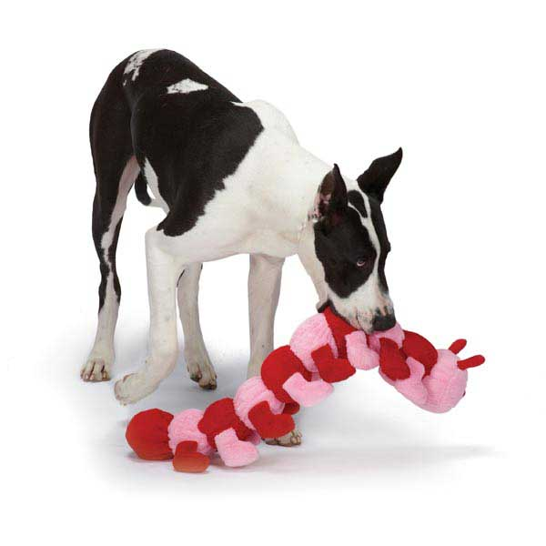 Zanies Love Pup Caterpillar Dog Toy
