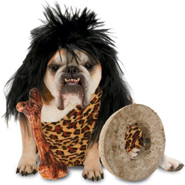 Zelda Cave Dog Halloween Dog Costume
