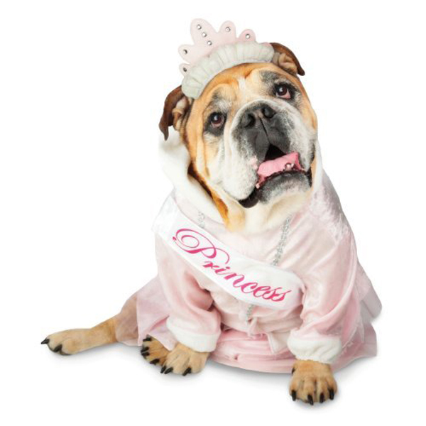 Zelda Princess Halloween Dog Costume