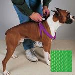 View Image 1 of Guardian Gear Two-Step Dog Harness - Electric Lime