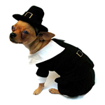 Pilgrim Boy Dog Costume
