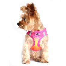 American River Choke-Free Dog Harness - Raspberry Pink and Orange