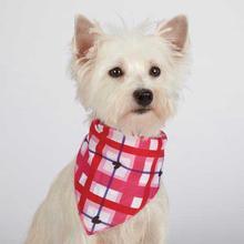 Aria Hugs N' Paisley Valentine Dog Bandana 2pk