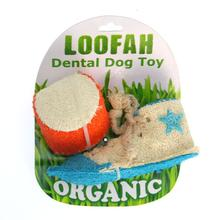 Athletic Loofah Dog Toy Combo
