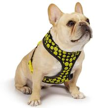 Casual Canine Smiley Face Dog Harness