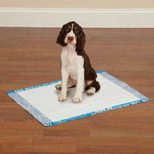 Clean Go Pet Graffiti Puppy Pads - Blue