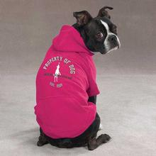 Dog is Good Solid Dog Hoodie - Raspberry Sorbet
