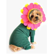 Flower Halloween Dog Costume