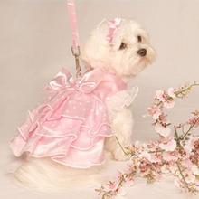 Garden Party Dog Dress Set with Headpiece and Leash - Sweetheart Pink Satin