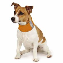 Insect Shield Dog Neck Gaiter - Carrot