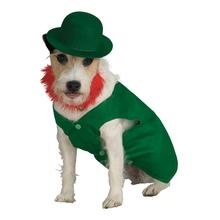 Leprechaun Dog Costume