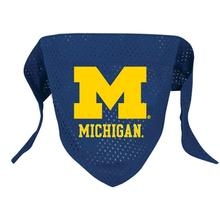 Michigan Wolverines Mesh Dog Bandana