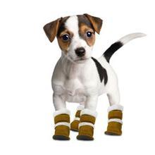 Pugz Dog Boots