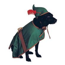 Robin Hood Dog Halloween Costume