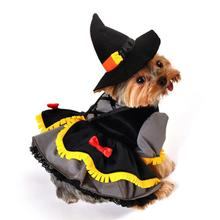 Scarecrow Witch Dog Costume by Anit