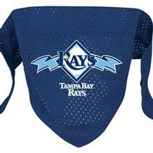 Tampa Bay Rays Mesh Dog Bandana