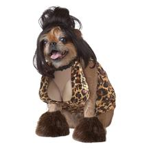 The Lady is a Tramp Dog Costume