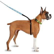 Thunderleash - Adjustable Dog Leash/Harness