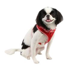 Vivien Dog Harness by Puppia - Red