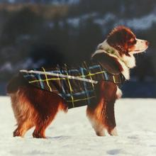 West Coast Dog Rainwear - RC Plaid