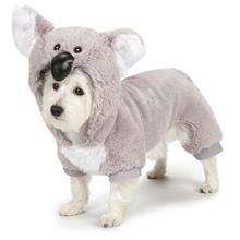 Zack and Zoey Koala Halloween Dog Costume