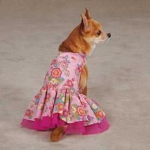 Zack & Zoey Spring Garden Dog Dress