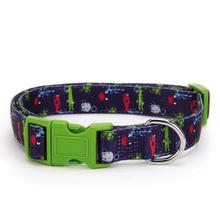 Zack and Zoey Under the Sea Dog Collar