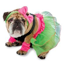 Zelda 80's Party Halloween Dog Costume