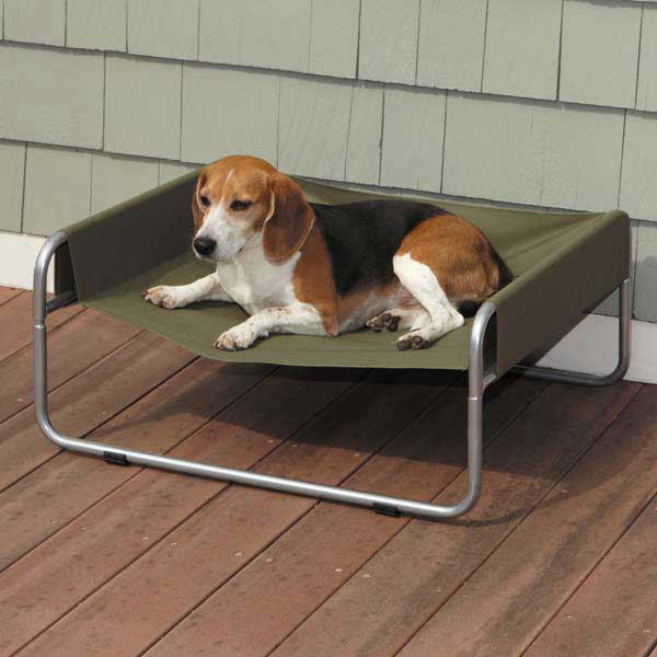 off the ground elements with the Guardian Gear Insect Shield Pet Cot