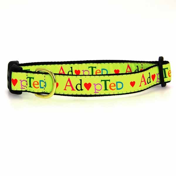 Adopted Dog Collar by Up Country