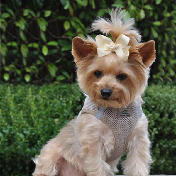 American River Ultra Choke-Free Mesh Dog Harness - Beige