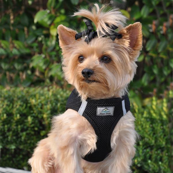 American River Ultra Choke-Free Mesh Dog Harness - Black