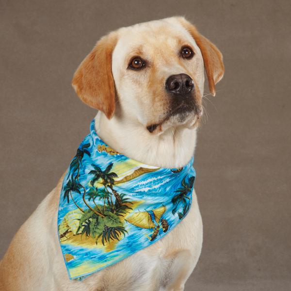 Aria Aloha Dog Bandana