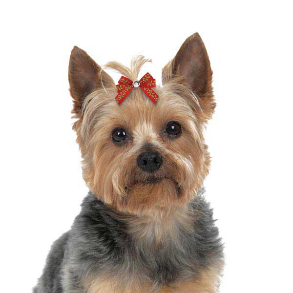 Aria Season's Greetings Dog Bows