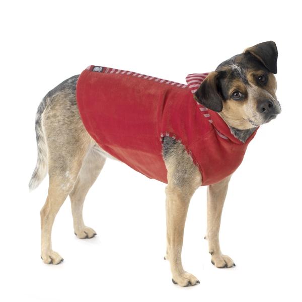 Bandit's Velour Dog Hoodie - Red