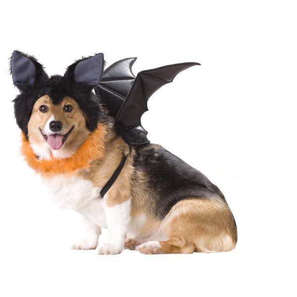 Bat Halloween Dog Costume
