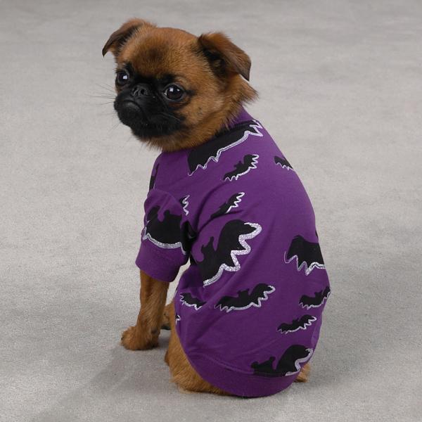 Bat Halloween Dog T-Shirt by Zack & Zoey