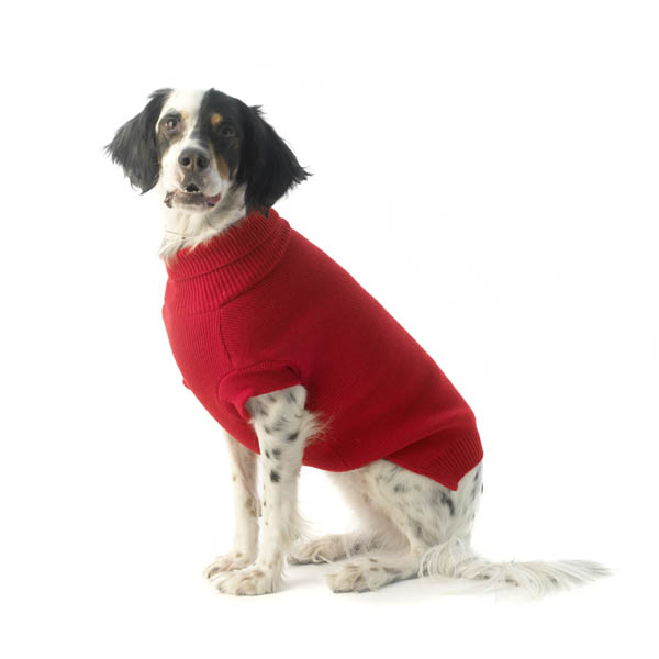 Baxter's Basic Dog Sweater - Red