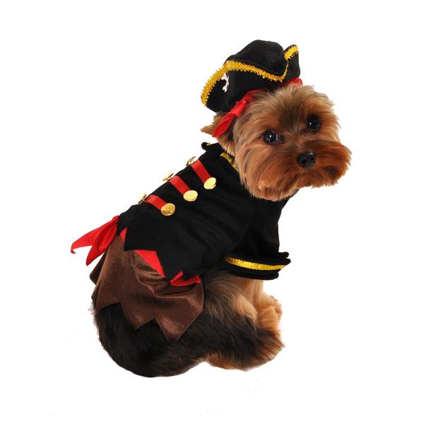 Buccaneer Pirate Halloween Dog Costume