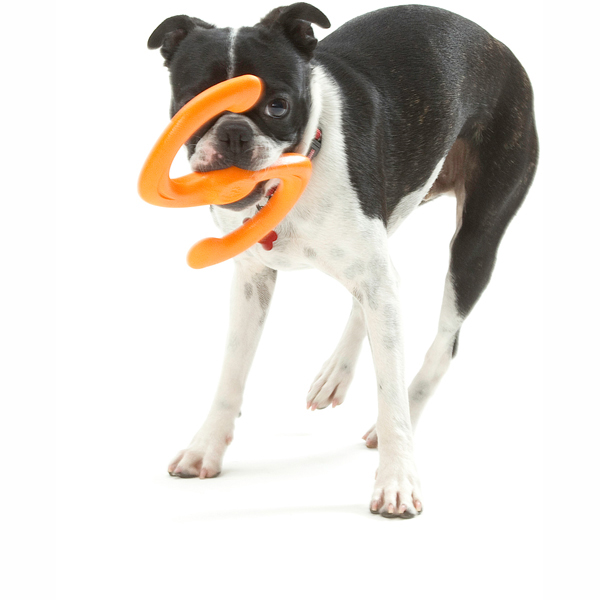Bumi Dog Toy - Orange