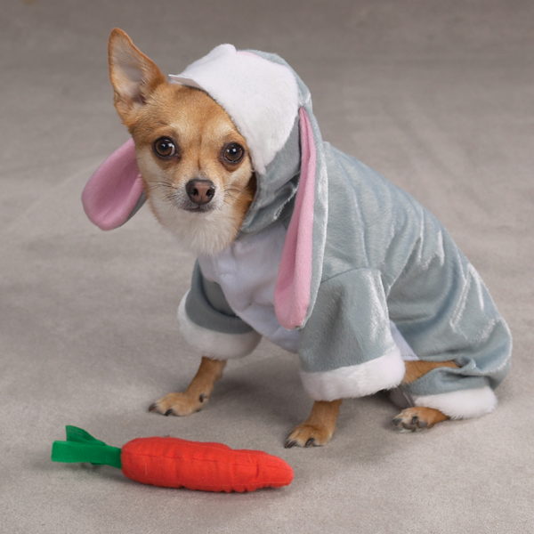 Bunny Rabbit Costume for Dogs by Zack & Zoey