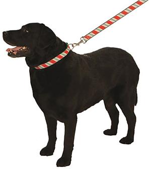Candy Cane Christmas Holiday Ribbon Collars