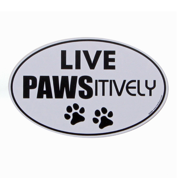 Car Magnet - Live Pawsitively