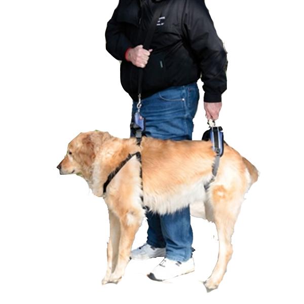 CareLift Pet Lifting Harness - Full Body