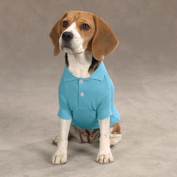 Casual Canine Basic Polo Dog Shirt - Air Blue